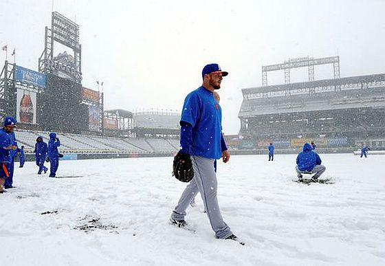 Snow Mets Rockies 3