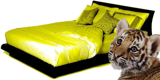 beds 73352 copy