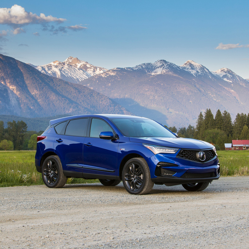 2019 Acura RDX : Review