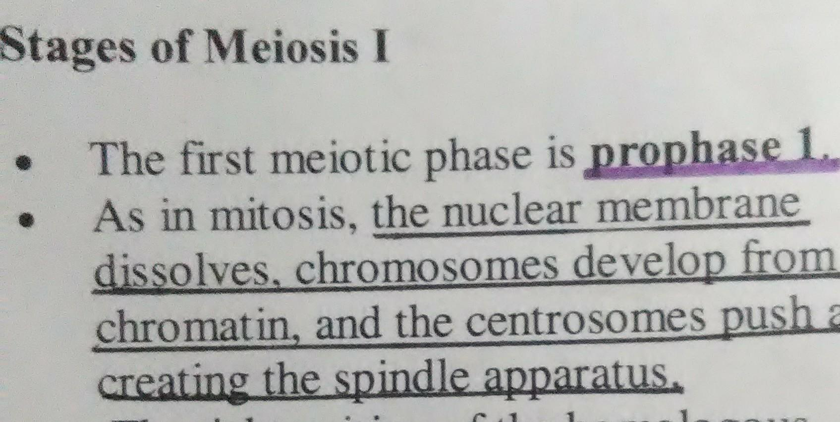 Prophase I Of Meiosis Crossing Over Results In