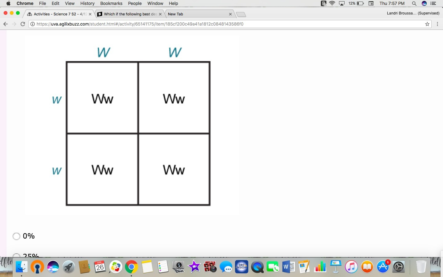 The Punnett Square Shows The Possible Genotype