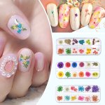 3d Real Dry Dried Flower Nail Sticker Tips Nail Art For Uv Gel Acrylic Diy Decor Ebay