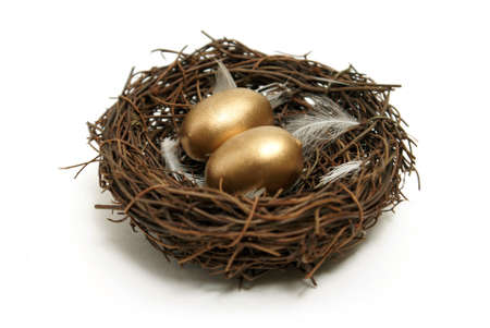 A nest with golden eggs for many financial concepts. Stock Photo - 7617906