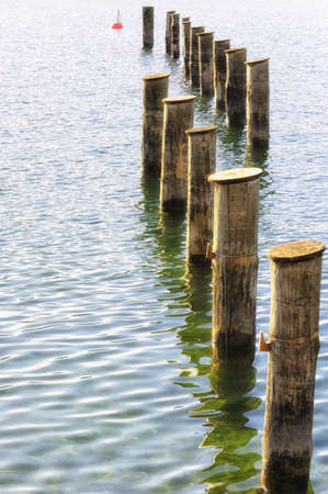 wooden mooring poles water: old tree trunks at a lake