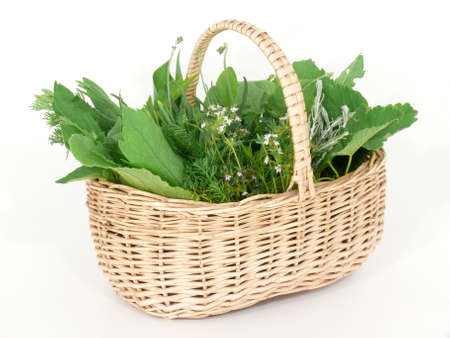 herb basket: Wild herbs in basket