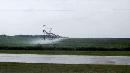 Pivot spraying on Bean field Stock Photo - 45838638