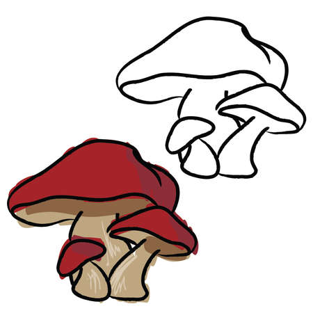 Hand Drawn Mushrooms, Red, and black and white 68809818