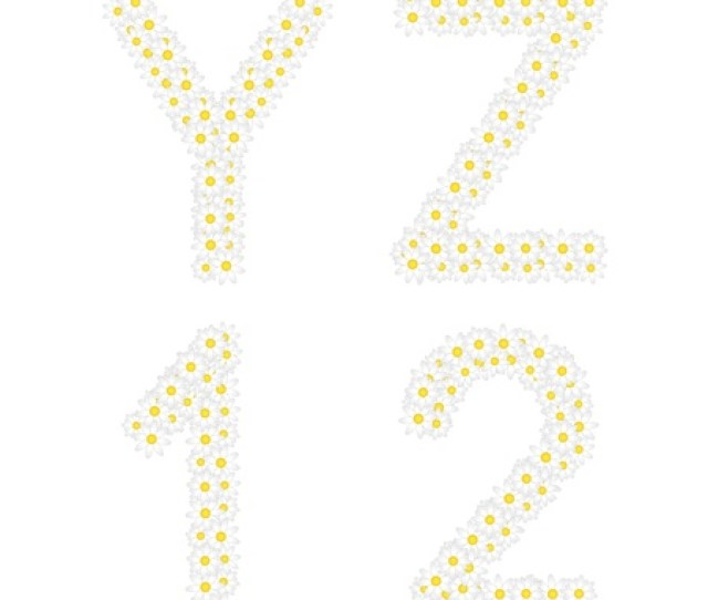 Letters Yz And 1 2 Figures Composed From Daisy Flowers Complete Alphabet In The Gallery