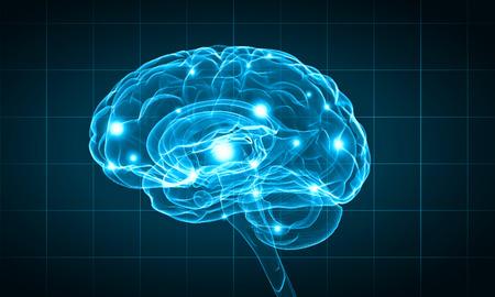 Concepto de la inteligencia humana con el cerebro humano sobre fondo azul Foto de archivo - 44957814