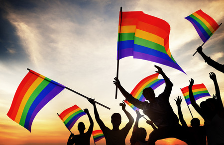 demonstration: Group of People Holding Rainbow Flags