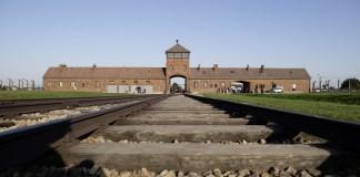 75th anniversary of the liberation – International Auschwitz C