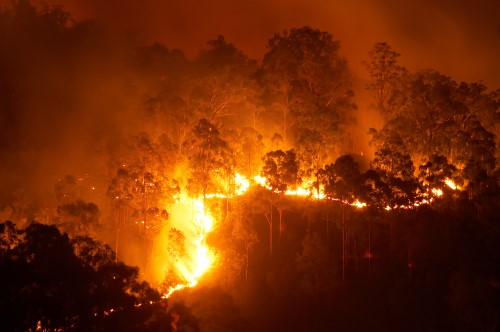 Specialist surplus lines coverage needed for wildfire ...