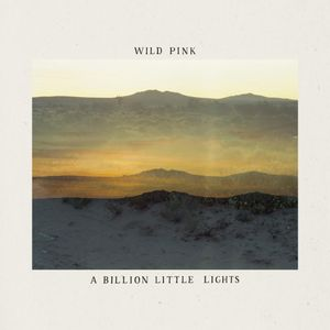 DOWNLOAD A Billion Little Lights Album zip by Wild Pink