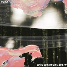 Download Tora Why Won't You Wait mp3 audio download