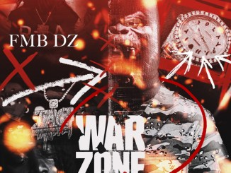 DOWNLOAD MP3: FMB DZ – Walking Dead