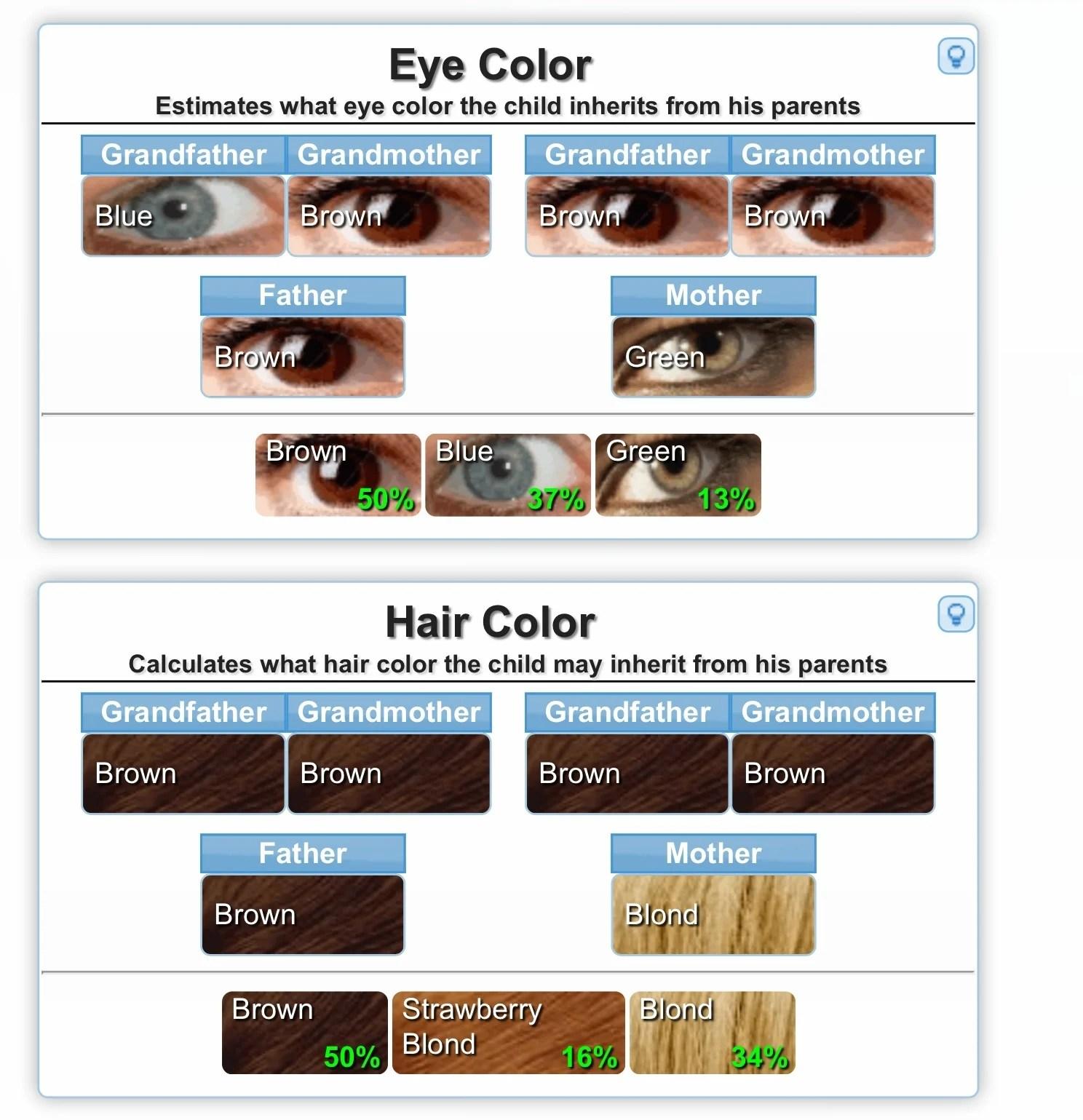 Genetics Calculator For Eye Color Etc