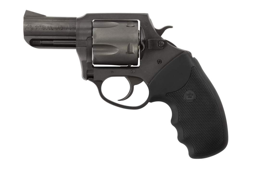 Charter Arms Pitbull 45 ACP