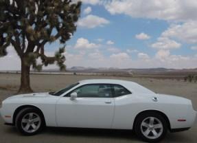 Autogekte in Amerika: de auto als cultuurgoed