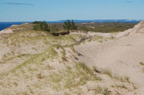 Noch mehr Dünen - die ganze Halbinsel besteht übrigens aus Sanddünen!