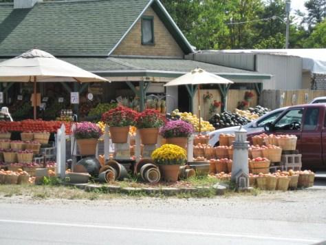 """Ein kleiner """"Farm Market"""" auf dem Weg"""