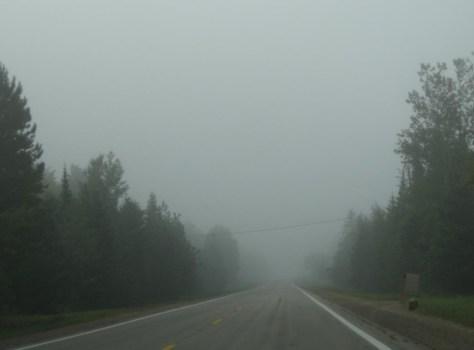 Meilenlang geradeaus durch den Nebel