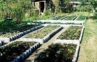 Можно ли иметь хороший урожай на шести сотках