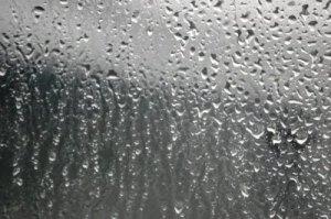 rainy.natalieDSC_0240