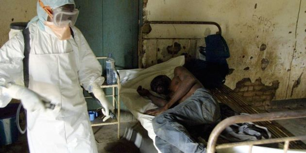 USAfrica: Ebola virus' menace reminds of the ineptitude of the African. By Bucky Hassan.