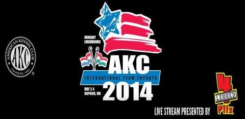 2014 Team Tryouts – Watch The Live Stream!