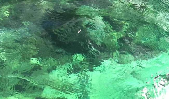 プエルトガレラの海の透明度