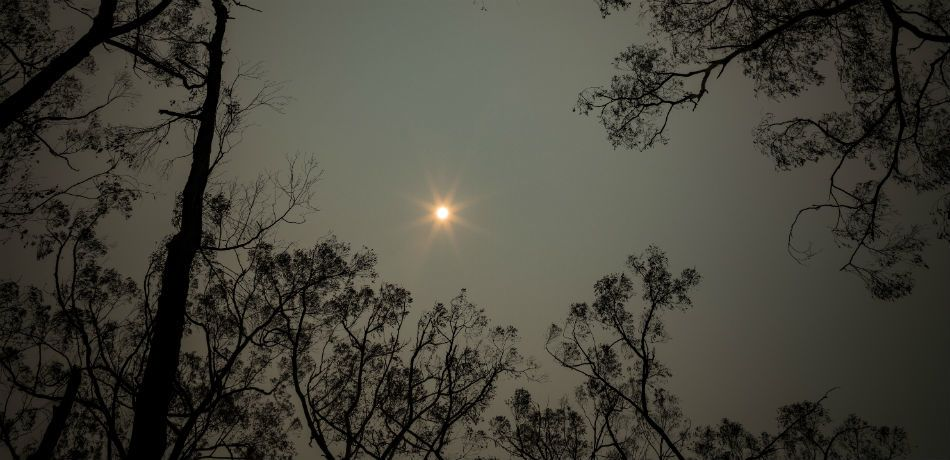 smoke from the australian wildfires hovers in the air