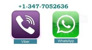 whatvib1-300x164