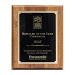Award-Panasonic-2006