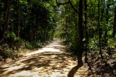Saranac MI www.usathroughoureyes.com