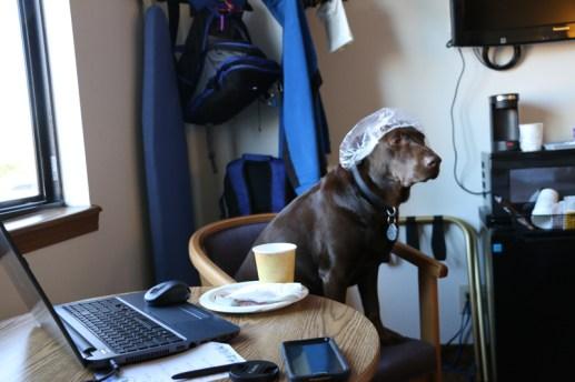 Emma's morning cup of coffee, Cody, WY www.usathroughoureyes.com