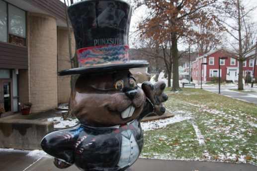 Punxsutawney Phil, Punxsutawney, PA. www.usathroughoureyes.com
