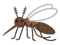 【虫】シリコーンオイルを肌に塗ると蚊はすぐに逃げる(花王)