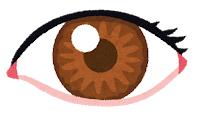 【素子】ヒトの眼と脳の機能を併せ持った光記憶素子の開発に成功