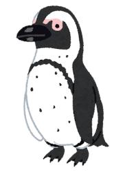 【鳥】絶滅危機ペンギン、ハチに刺され大量死・・