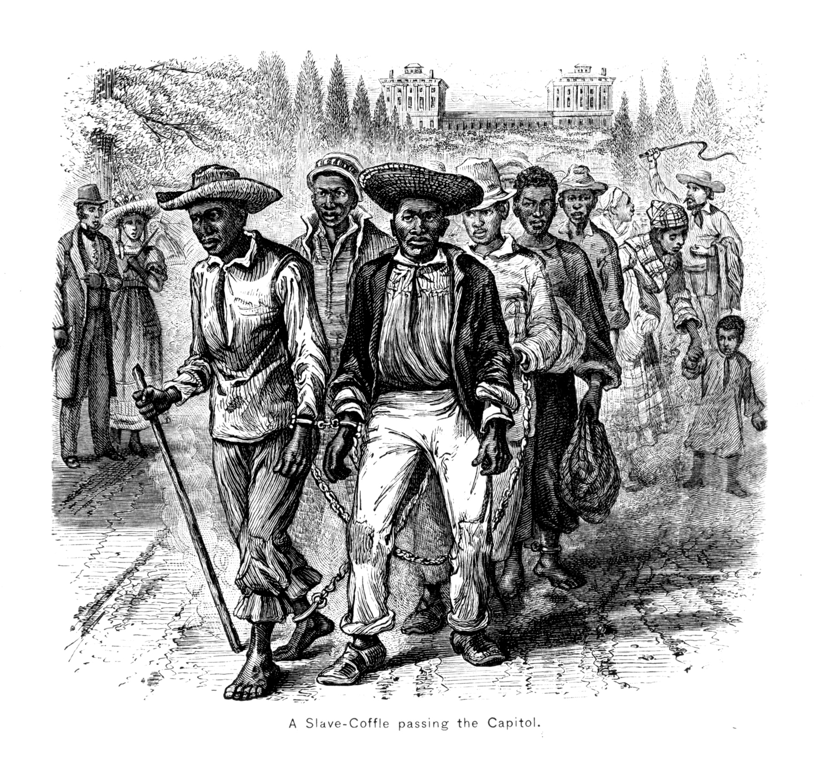 From Freedom S Shadow The History Of African Americans