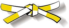 Ceinture demie-jaune