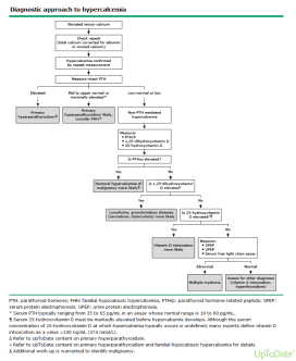 Approach to Hypercalcemia (UpToDate)