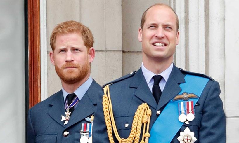 Prince Harry William Meghan Markle Money