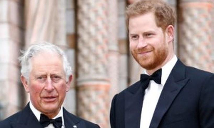 Prince Charles Harry Meghan Markle Archie Harrison Mountbatten Windsor No Royal Title