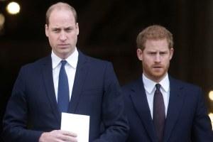 Prince William Prince Harry Mistrust Issues