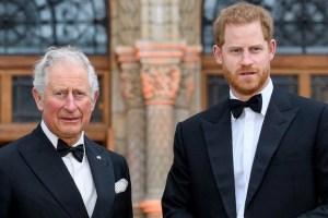 Prince Charles Harry Meghan Markle Archie Harrison Mountbatten Windsor Title