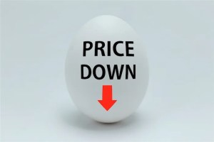 価格勝負(値下げ)はどれだけヤバいか?をExcelで知る方法【データテーブル】
