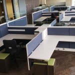 One Year Old Knoll Dividends Cubicles