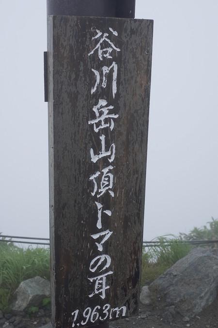 20150703_131436