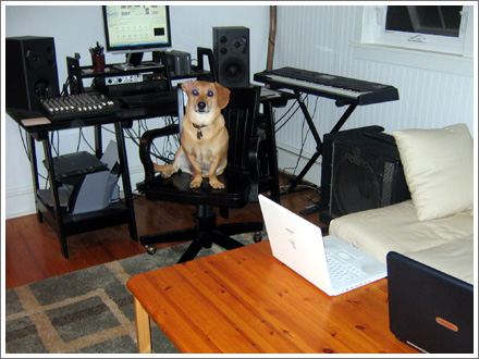 New Studio! New ferocious attack guard dog!